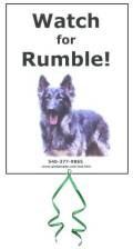 Please click to help find my brother Rumble!
